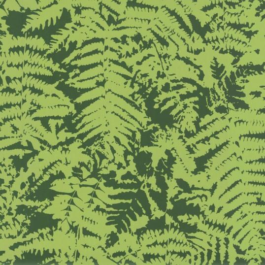 fern_-_green