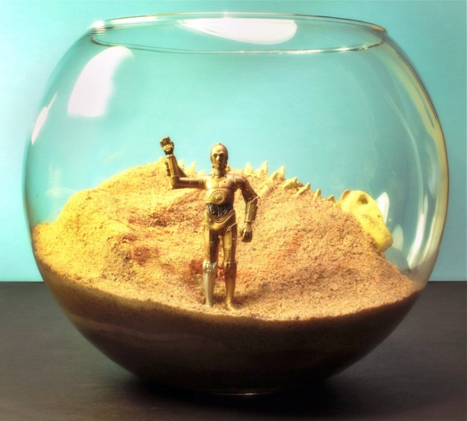Ten Quirky Terrariums